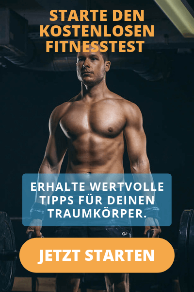 Fitnessanalyse